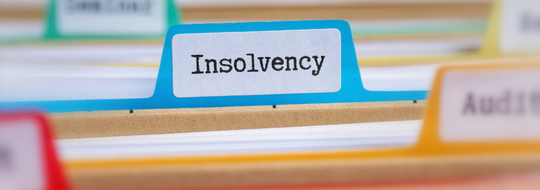 Experts reject 'insolvency tsunami' predictions but advise caution